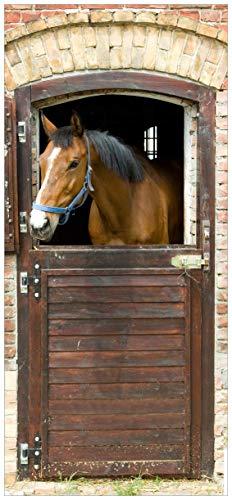posterdepot ktt0439 Türtapete Türposter Pferd im Stall-Größe 93 x 205 cm