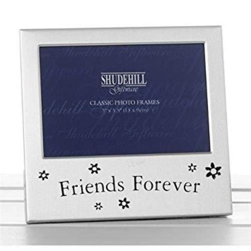 Viceni Inc Cornice portafoto con Scritta Friends Forever, 12,7 x 7,6 cm, Regalo per Amici 73484