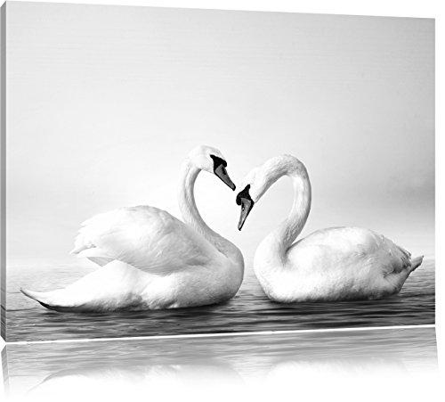 Pixxprint Schwäne auf dem Wasser als Leinwandbild | Größe: 80x60 | Wandbild| Kunstdruck | fertig bespannt