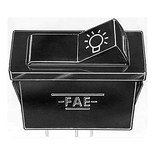 FAE 62490 Interruptor, luz Principal