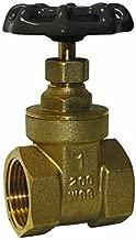Best brass gate valve 2 inch Reviews