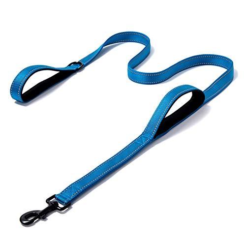 LWXFXBH - Correa para perro con doble asa para correr, amortiguador, banda de goma retráctil, banda reflectante ajustable (color: azul, tamaño: M (2,5 x 150 cm)