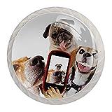 Tirador de manijas de cajón para el hogar, cocina, tocador, armario-Tres perros jugando teléfonos móviles