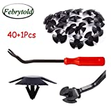 Febrytold Hood Insulation Retainer Clips - 40 Pcs Hood Insulation Retainers for Jeep Chrysler Dodge Ram Replace OEM 4878883AA LH LHS Nylon Clip with 1 Pcs Plastic Fastener Remover