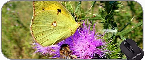 Alfombrilla de ratón extendida xxl, mariposa animal insecto alas naturaleza volando oficina alfombrilla de ratón