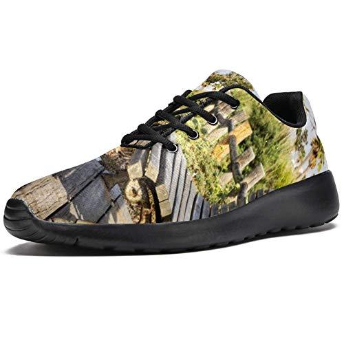 TIZORAX Sport-Laufschuhe für Herren, Park-Holzstuhl, modische Sneaker, Netzstoff, atmungsaktiv, Mehrfarbig - mehrfarbig - Größe: 47 EU