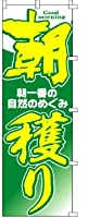 朝獲り2枚セット のぼり旗 (43A001)