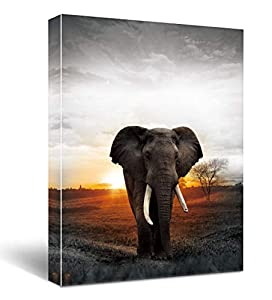 Elephants in the sunset Wall Decor Canvas Prints Life light red Watercolor Painting Theme Artwork Framed for Bathroom Bedroom Living Room Bedroom Home Office Decorations 12x16