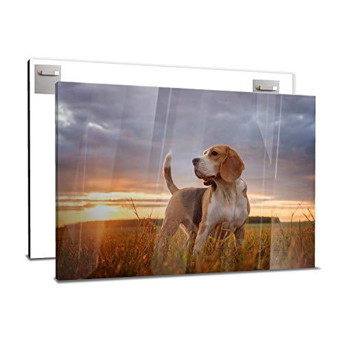 wandmotiv24 Ihr Foto auf Acrylglas 75 x 50 cm (BxH) - Querformat - Acrylglas SOFORT ONLINE VORSCHAU, personalisiertes Wandbild, Acrylbild, Glas Bild gestalten, personalisierte Foto-Geschenke