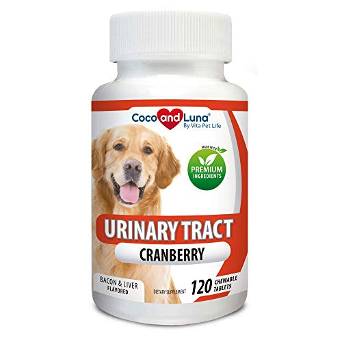 Cranberry for Dogs - Urinary Tract Support, Prevents UTI, Bladder Infections, Bladder Stones and Dog Incontinence. Antibacterial - 120 Natural Chew-able Tablets.