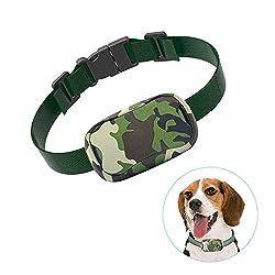 Pop View Humane Dog Training Collar