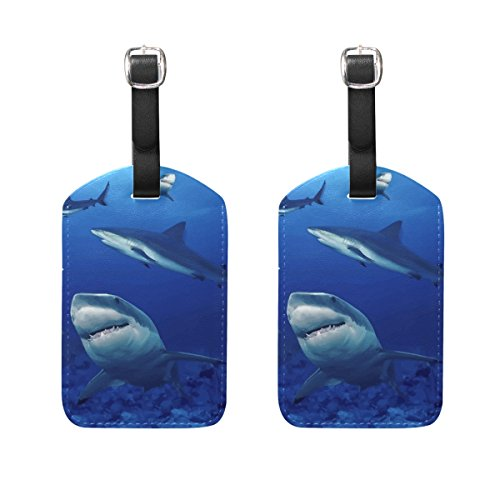 COOSUN Sharks Luggage Tags Travel Labels Tag Name Card Holder for Baggage Suitcase Bag Backpacks, 2 PCS