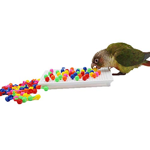 QBLEEV Bird Intelligence Training Toy,Parrot Puzzle Building Blocks Toy,Tabletop Treats Education Toys, Bird Plastic Cage Playpen Toys for Parakeet Cockatiel Conure Budgie