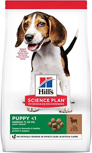 HILL S Puppy Medium - Cibo Secco per Cuccioli di Taglia Media con Agnello e Riso kg.2.5