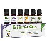 Ätherische Öle Set BIO - 100% naturrein - Duftöle für Diffuser - Aromaöle für Aromatherapie, 6 x 10ml (Rosmarin, Lavendel, Eukalyptus, Zitronengras, Orange, Teebaum)