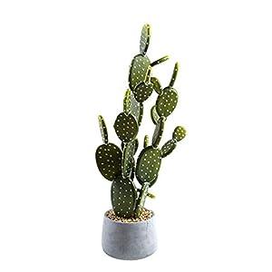 Silk Flower Arrangements SUWIN Ceramic Simulation Cactus Succulent Potted Plant, Office Window Artificial Green Plant, Floor Bonsai Artificial Flower, 26X65cm