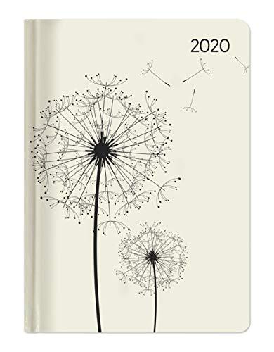 Ladytimer Blowballs 2020 - Pusteblume - Taschenkalender A6 (11 x 15) - Weekly - 192 Seiten - Notizbuch - Terminplaner