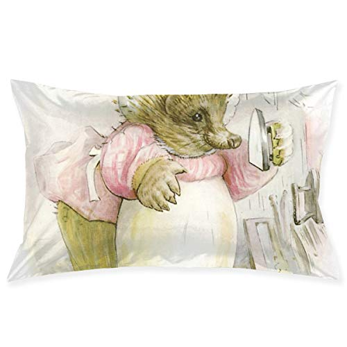 Rasyko Mrs Tiggy Winkle Beatrix Potter Throw Pillow Cover Cushion Covers Pillowcase Pillow Shams Home Decor for Sofa Couch Bed Chair 20x30 inch