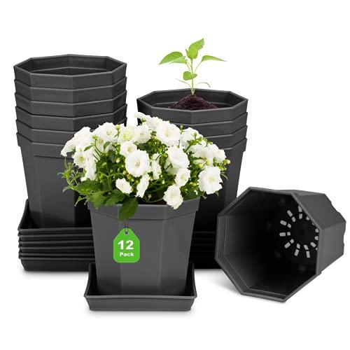Anzuchttöpfe, kleine Blumentopf Pflanztöpfe Kunststoff Blumentöpfe mit Untersetzer für Blumen und Pflanzen Anzucht Sukkulenten Pflanzkübel Pflanztopf 12 Stück (Durchmesser 10cm, Schwarz)