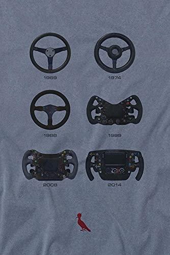 Camiseta Evolucao