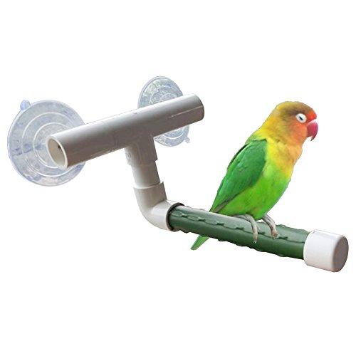 dontdo Birds Pet Wand Saugnapf Paw Schleifstifte Ständer Dusche Sitzstangen Papagei Wellensittich Toys Brain Spiel Training Werkzeug