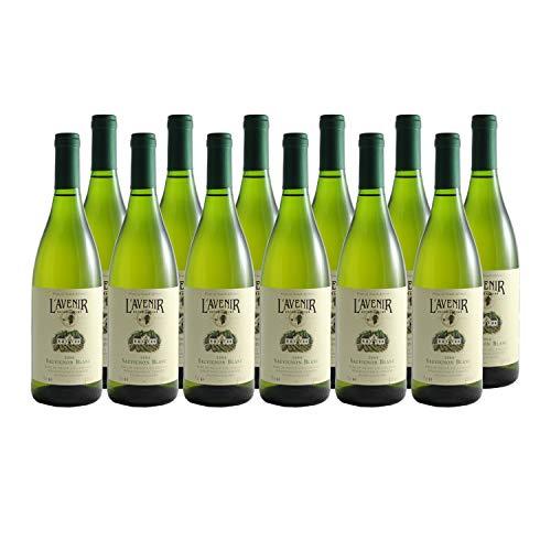 Afrique du Sud Stellenbosch Sauvignon Weißwein 2004 - Domaine de l'Avenir - - Südafrika Südafrika - Rebsorte Sauvignon Blanc - 12x75cl