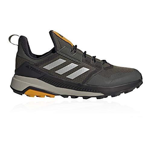 adidas Terrex Trailmaker C.RDY, Zapatillas de Hiking Hombre, VERLEG/GRIMET/OROLEG, 42 2/3 EU