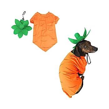 Midlee Carrot Easter & Halloween Dog Costume  Medium
