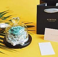 LSNLNN 母乳の贈り物としてガラスドームで覆われた造られた花、保存されたバラ保存の花の頭。,F