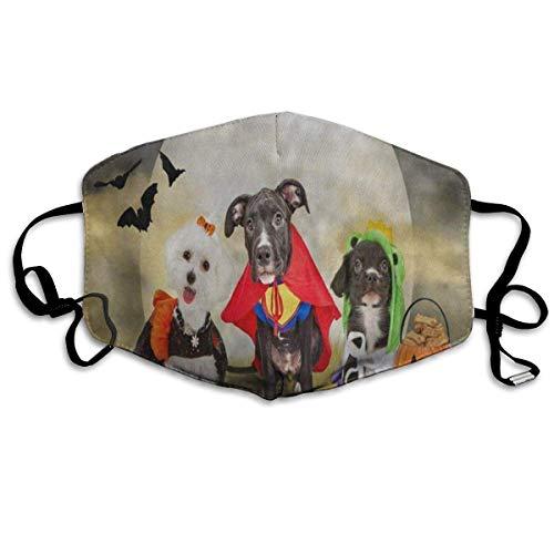 Hipster Hündchen in Halloween-Kostümen gekleidet Vintage Männer Frauen Atmungsaktiv Komfortable Gesichtsschutzhülle mit Gummiband für die persönliche Gesundheit Verschiedene Verwendung