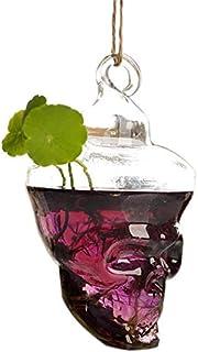 Rosepoem Jarrón de Vidrio hidropónico,Jarrón de Cristal en Forma de Calavera Florero Hecho a Mano Flor hidropónica Botella Planta Olla para decoración de oficinas