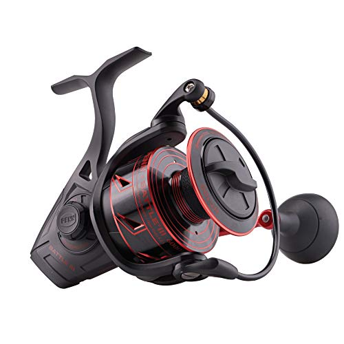 Best Inexpensive Choice: Penn Battle III Fishing Spinning Reel