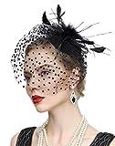 Cizoe Fascinator Hair Clip Pillbox Hat Bowler Feather Flower Veil Wedding Party Hat Tea Hat(2-Black)