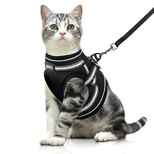 JOYO Katzengeschirr mit Leine weich verstellbar Geschirr für Katzen, Ausbruchsicher Welpengeschirr mit reflektierenden Streifen, Brustgeschirr Katzen Weste für Kitten Welpen & kleine Hunde S