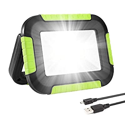 LE Portable LED Work Light, 10W, Rechargeable Outdoor Flood Light, 4400mAh Power Bank for Hiking, Working, Car Repairing, Workshop and More