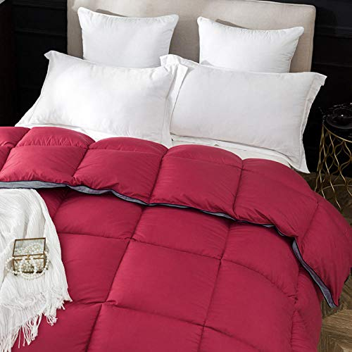 CHOU DAN ,The down duvet is thickened in spring, autumn and winter to keep warm goose down-2.2x2.4 3000g_Scarlet
