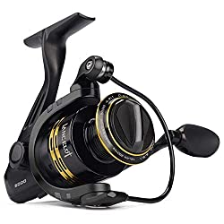 KastKing Lancelot Spinning Reel Review
