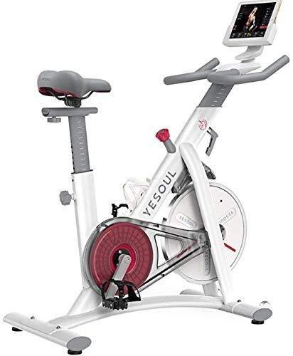 YISUNF Ejercicio Bicicleta, Bicicleta de Ejercicios Ciclismo Vuelta de la Bici de Ciclismo Indoor for Bicicleta Ciclo Cardio Trainer corazón W/Pantalla LED Bicicletas de Ejercicio estacionario Inter