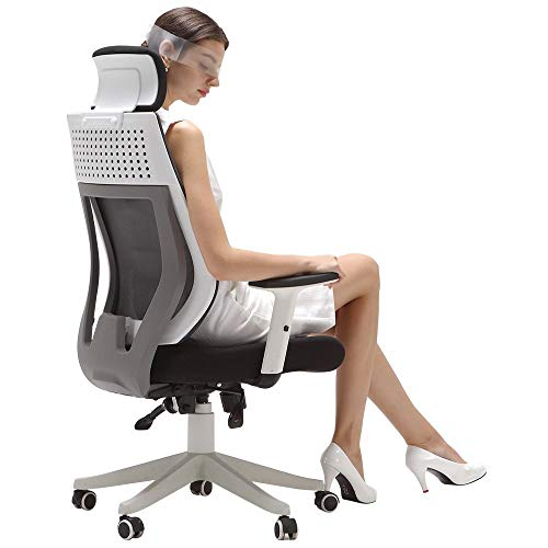 Hbada Ergonomic Office Chair, High Back Adjustable Mesh Computer Desk Chair-White (White)