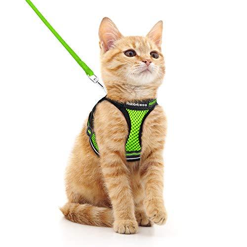 rabbitgoo Katzengeschirr Leine Set Geschirr für Katzen ausbruchsicher Katzenleine Kitten verstellbar weich Kätzchenweste mit reflektierenden Streifen für extra kleine kleine Katzen Cat Harness
