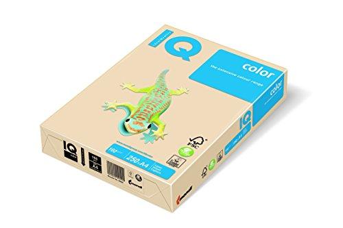 IQ 129969 multifunctioneel papier, A4, 160 g, crèmekleurig, 250 vellen