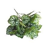 Fusong 5 racimos de plantas de simulación, plantas verdes, particiones en macetas, arreglos florales, hojas decorativas, materiales de pared, 5 tenedores, hojas de begonia, verde claro