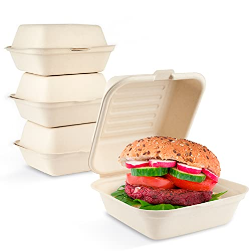 HAAGO 100 Contenitori da Asporto Biodegradabili in Canna da Zucchero, 15x30cm - Ecologici e Compostabili