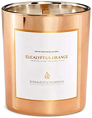 Benevolence LA Scented Candles Soy Candles - Aromatherapy Candles Relaxing Candles Rose Gold Glass Decorative Candle Perfect Scented Candles