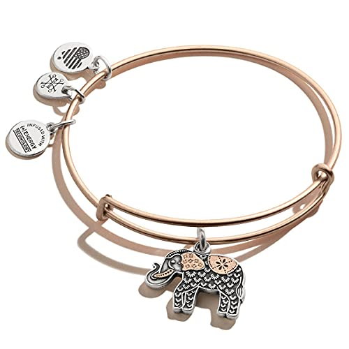 Alex and Ani Path of Symbols Expandable Bangle for Women, Elephant Charm, Two-Tone Finish, 2 to 3.5 in