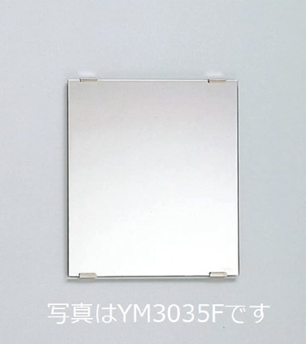魔術成熟した笑TOTO 化粧鏡 YM3560F 耐食鏡 角型 350×600(mm)