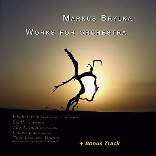 Markus Brylka