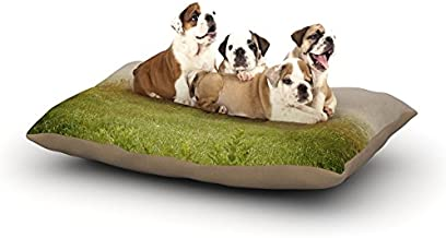 """Kess InHouse Angie Turner """"Forgotten Car"""" Grass Dog Bed, 30 by 40-Inch"""