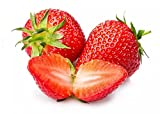 Strawberry seeds for planting,that can grown indoors or outdoors. Seeds are Non-GMO,non-hybrid,heirloom and organic. Germination rate about 80% or better.Easy to plant and grow fastly. Light requirement: full sun. Days to maturity: about 90 days.