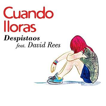 Cuando lloras (feat. David Rees)